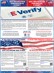 E-Verify and Right To Work Poster - Bilingual