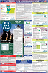 Oregon and Federal Labor Law Poster