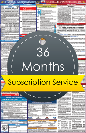 3 Year Subscription Service