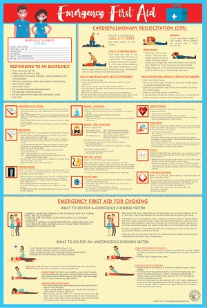 First Aid, Choking, CPR Poster  - $19.95